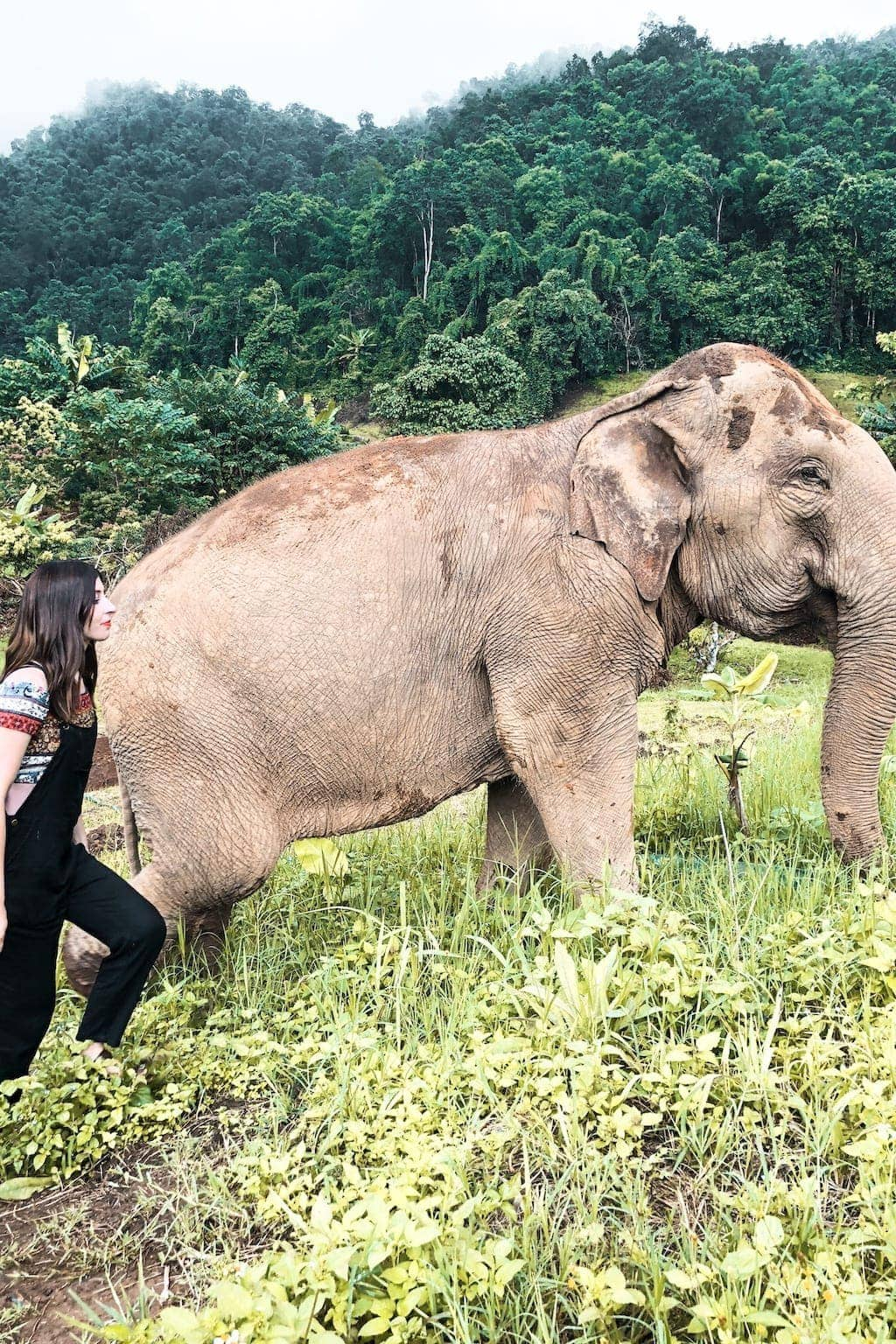 Ethical Elephant Sanctuary: Hiking with an elephant