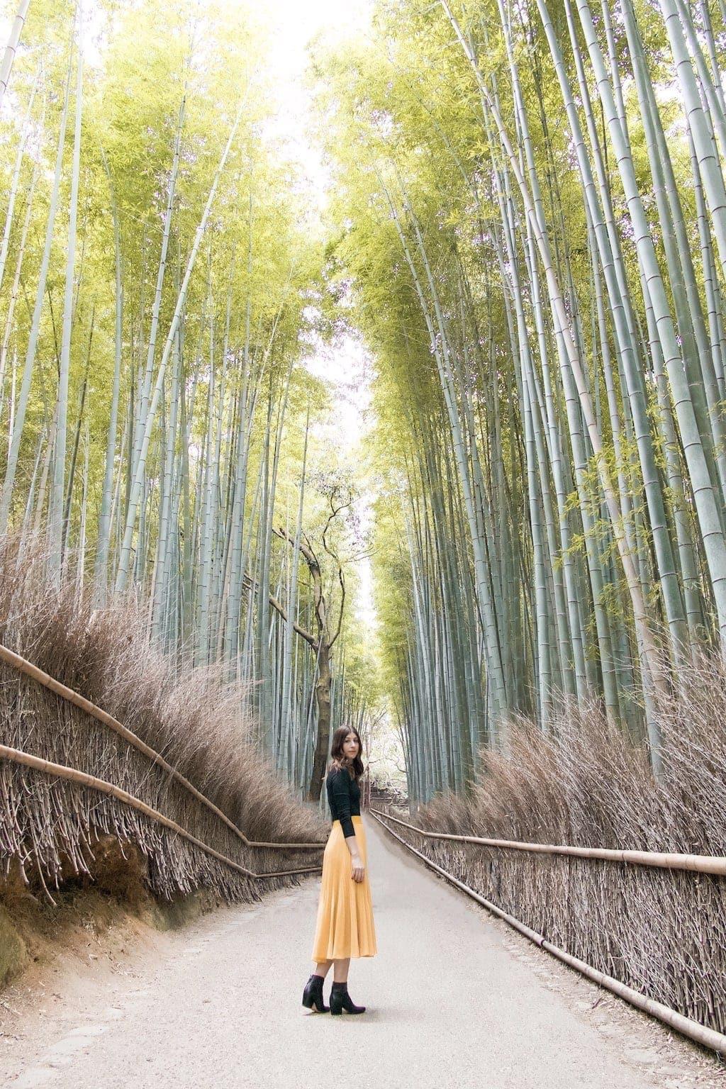 Kyoto Travel Guide: Arashiyama Bamboo Forest